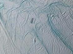 enceladus_struct_spot_thumb_080329.jpg